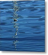 Black And White On Blue Metal Print