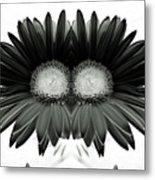 Black And White Petals Metal Print