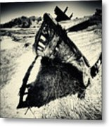 Black And White Photography Shipwreck Pinhole Metal Print