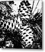 Black And White Pine Cone Metal Print