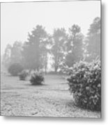Black And White Snow Landscape Metal Print
