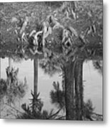 Black And White Water Reflections Metal Print
