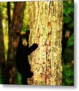 Black Bear Cubs Metal Print