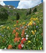 Black Bear Pass Landscape Metal Print