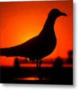 Black Bird Red Sky Metal Print