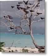 Black Birds Metal Print