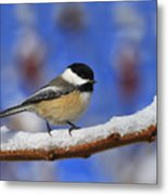 Black-capped Chickadee In Sumac Metal Print
