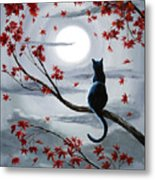 Black Cat in Silvery Moonlight Metal Print