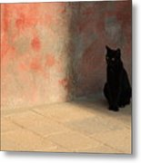 Black Cat On Burano Metal Print