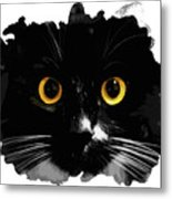 Black Cat, Yellow Eyes Metal Print