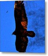 Black Eagles Vision Metal Print