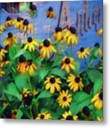 Black-eyed Susans At The Bag Factory Metal Print