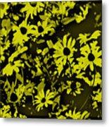 Black Eyed Susan's Metal Print