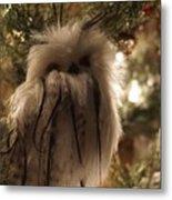 Black Feather Owl Metal Print