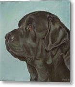 Black Labrador Dog Profile Painting Metal Print