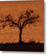 Black Lace Tree Metal Print