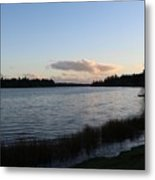 Black Lake Metal Print