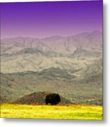 Black Mountains Az Metal Print