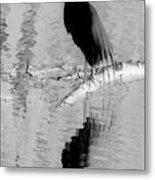 Black On White Bird Metal Print