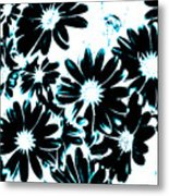 Black Petals With Sprinkles Of Teal Turquoise Metal Print