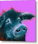 Black Pig Painting On Purple Metal Print