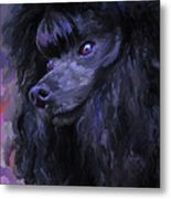 Black Poodle Metal Print