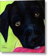 Black Puppy - Shelter Dog Metal Print