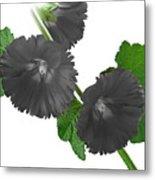 Black Roses Metal Print