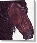 Black Sterling I Metal Print