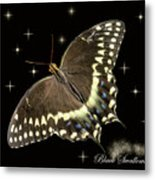 Black Swallowtail On Black Metal Print