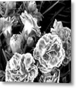 Black White View  Metal Print