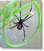 Black Widow Wheel Metal Print