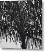 Black Willow Metal Print