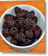 Blackberries 134 Metal Print