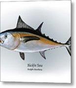 Blackfin Tuna Metal Print by Ralph Martens