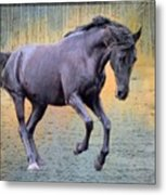 Blacks Danse Metal Print