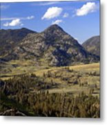 Blacktail Road Landscape 2 Metal Print