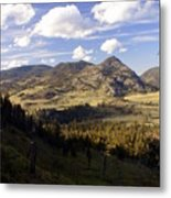 Blacktail Road Landscape Metal Print