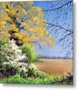 Blackthorn Winter Metal Print
