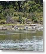 Blanco River - Texas Metal Print