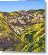 Blanketed In Flowers Metal Print