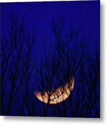Blood Moon And Winter Trees Metal Print