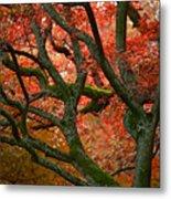 Blood Red Autumn Tree Metal Print