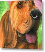 Bloodhound Dog Art Metal Print