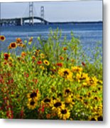Blooming Flowers By The Bridge At The Straits Of Mackinac Metal Print