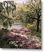 Blooming Shrubs And Trees Metal Print