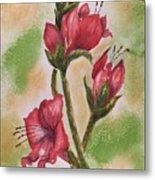 Blooms 'n Red Metal Print