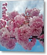 Blossom Bliss Metal Print