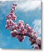 Blossom Impressions Metal Print