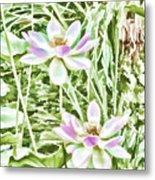 Blossom Pink Lotus Flower Metal Print